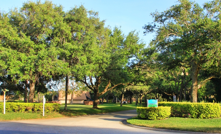 PortSalernoFL.com Neighborhoods - Cove Road - River Pines